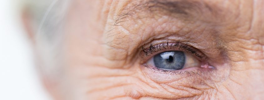 eye health nutrition aging